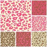 Rosafarbener Gepard-Druck-nahtloses Muster-Set Lizenzfreie Stockfotos