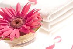Rosafarbener Gerbera und weiße Tücher Stockbild
