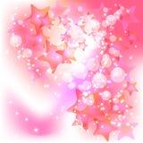 Rosafarbener Hintergrund Lizenzfreie Stockbilder