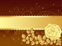 Rosafarbener Hintergrund des Luxus Stockbilder