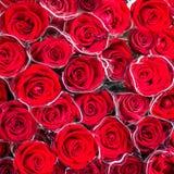 Rosafarbener Hintergrund des Rotes lizenzfreie stockbilder