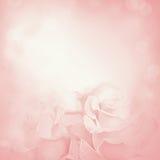 Rosafarbener Hintergrund mit rosafarbenen Blumen Stockbild