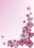 Rosafarbener mit Blumenhintergrund Lizenzfreie Stockfotos