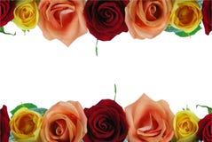 Rosafarbener mit Blumenrand Lizenzfreie Stockfotos