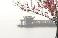 Rosafarbener Pfirsich und chinesisches Boot Stockbilder