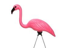 Rosafarbener Rasen-Flamingo Stockfotografie