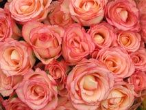 Rosafarbener Roseblumenstrauß Stockbilder