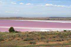 Rosafarbener See in Australien Lizenzfreies Stockfoto