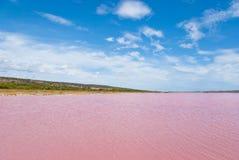 Rosafarbener See, Westaustralien lizenzfreie stockfotos