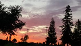 Rosafarbener Sonnenuntergang Stockfoto