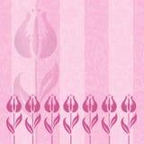 Rosafarbener Tulpe-Dunst Stockbilder