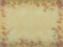 Rosafarbener und orange Blütenblumen-Randhintergrund stock abbildung