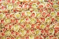 Rosafarbener und weißer Rosehintergrund. Lizenzfreie Stockfotografie