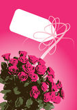 Rosafarbenes Bündel des Rosas Stockfoto