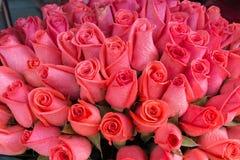 Rosafarbenes Bündel des Rosas Lizenzfreies Stockbild