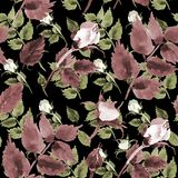 Rosafarbenes Blumenmuster des Wildflowertees in einer Aquarellart Lizenzfreie Stockfotos