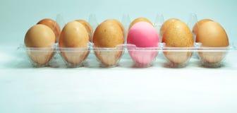 Rosafarbenes Ei wird durch braune Eier umkreist. Stockbilder
