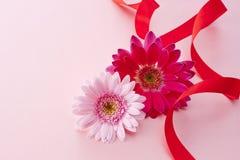 Rosafarbenes Gänseblümchen auf rosafarbenem Satin Stockbilder