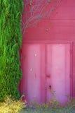 Rosafarbenes Gebäude, Türen und Anlage Lizenzfreies Stockfoto