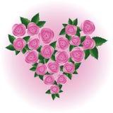 Rosafarbenes Inneres des Rosas Stockfotografie