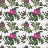 Rosafarbenes Muster der Tapetenweinlese vektor abbildung
