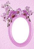 Rosafarbenes ovales Feld mit Orchidee Stockfoto
