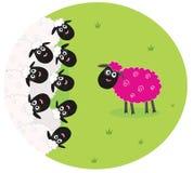 Rosafarbenes Schaf ist mitten in weißen Schafen einsam Lizenzfreies Stockfoto