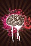 Rosafarbenes Splatter-Gehirn Lizenzfreie Stockfotografie
