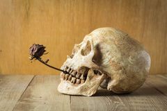 Rosafarbenes Stillleben des Schädels und der Brandwunde auf hölzernem Hintergrund Stockfotografie
