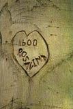 Rosalind mi amor Imagen de archivo libre de regalías