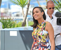 Rosario Dawson Royalty Free Stock Photos