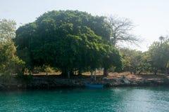 Rosario Islands, Colombia royalty free stock image