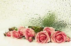 Rosarosenblumen und strukturiertes Glas Stockfotografie