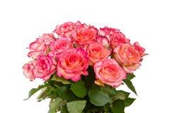 Rosarosenblumenstrauß lokalisiert lizenzfreies stockbild