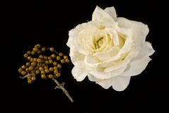Rosary and rose Stock Photos