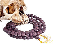 Rosary and  Skull. On a white background Royalty Free Stock Photography