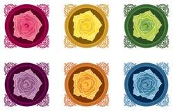 Rosas Foto de Stock Royalty Free