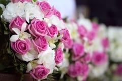 Rosas. imagem de stock royalty free