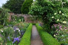 Rosas, abadía de Mottisfont, Hampshire, Inglaterra Fotos de archivo libres de regalías