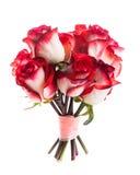 Rosas aisladas imagenes de archivo