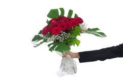 Rosas aisladas en el fondo blanco Imagen de archivo libre de regalías