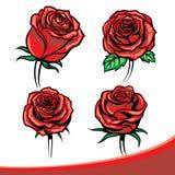 Rosas ajustadas Imagens de Stock Royalty Free