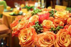 Rosas alaranjadas Imagens de Stock Royalty Free