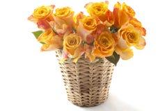 Rosas alaranjadas Imagens de Stock