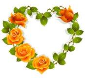 Rosas alaranjadas na forma do coração Fotografia de Stock Royalty Free