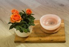 Rosas alaranjadas no fundo da placa de madeira no potenciômetro foto de stock royalty free