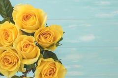 Rosas amarelas Imagens de Stock Royalty Free