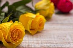 Rosas amarelas bonitas em um fundo de madeira Cores brilhantes Cartão para o dia do ` s das mulheres Imagem de Stock Royalty Free