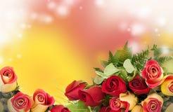 Rosas amarelas e vermelhas foto de stock royalty free