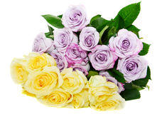 Rosas amarelas e violetas do ramalhete foto de stock